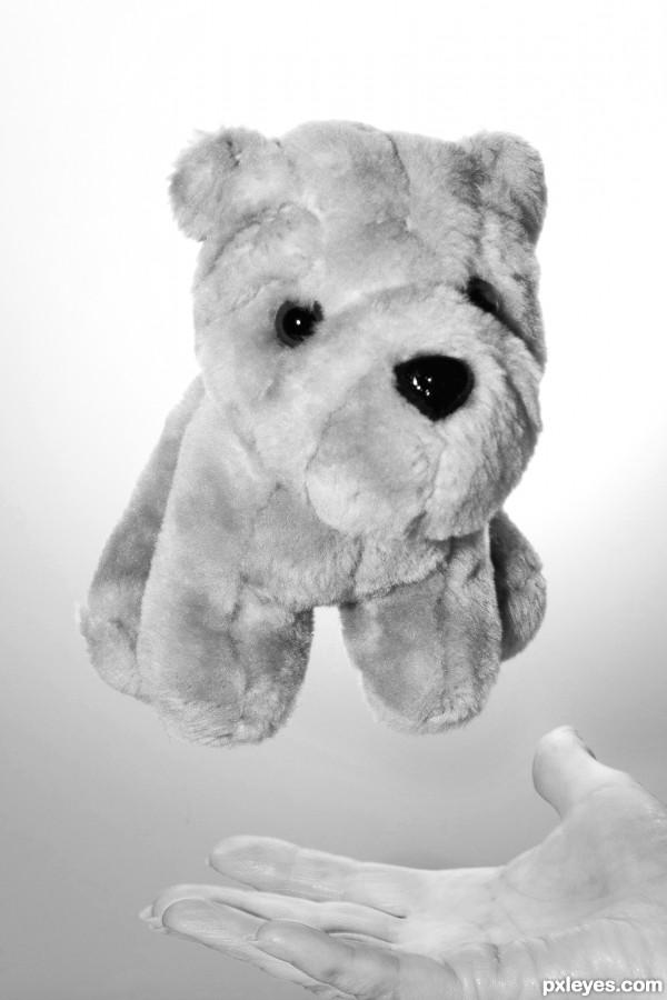 Floating teddy
