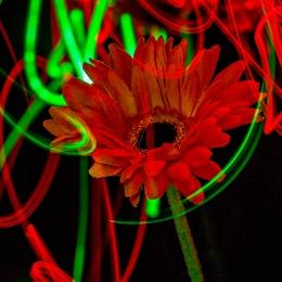 LEDPainting