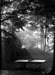Ping pong at the dawn