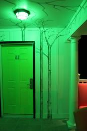 Weleavethegreenlighton