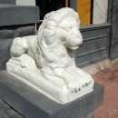 lion statue photoshop contest