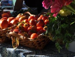 TomatoesafterSunrise