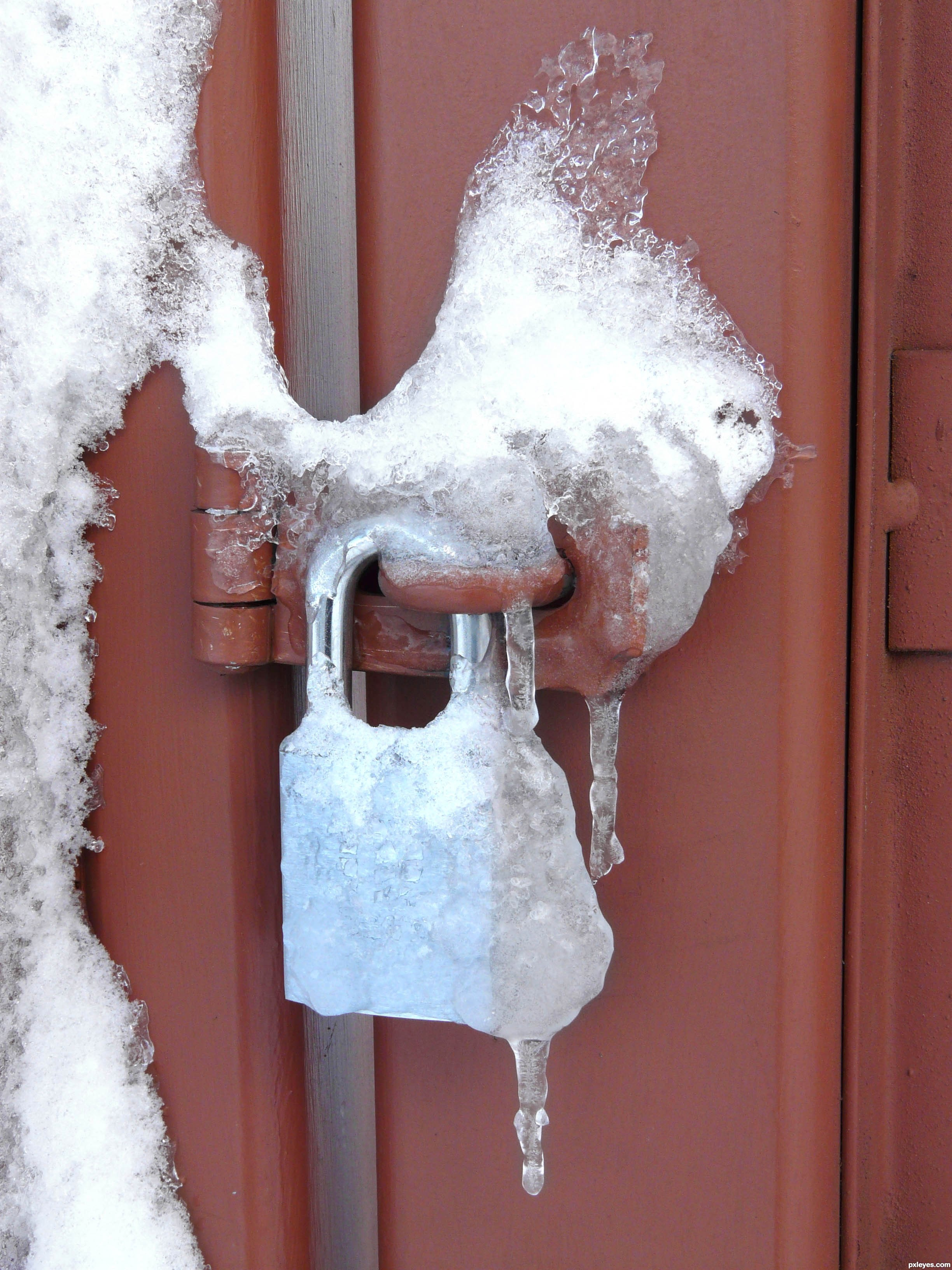 how to cook frozen padlock