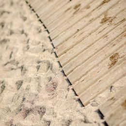 Sandwalk