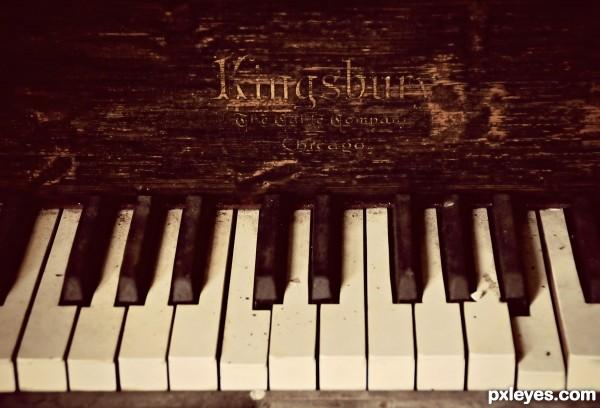 13 Ivory Keys