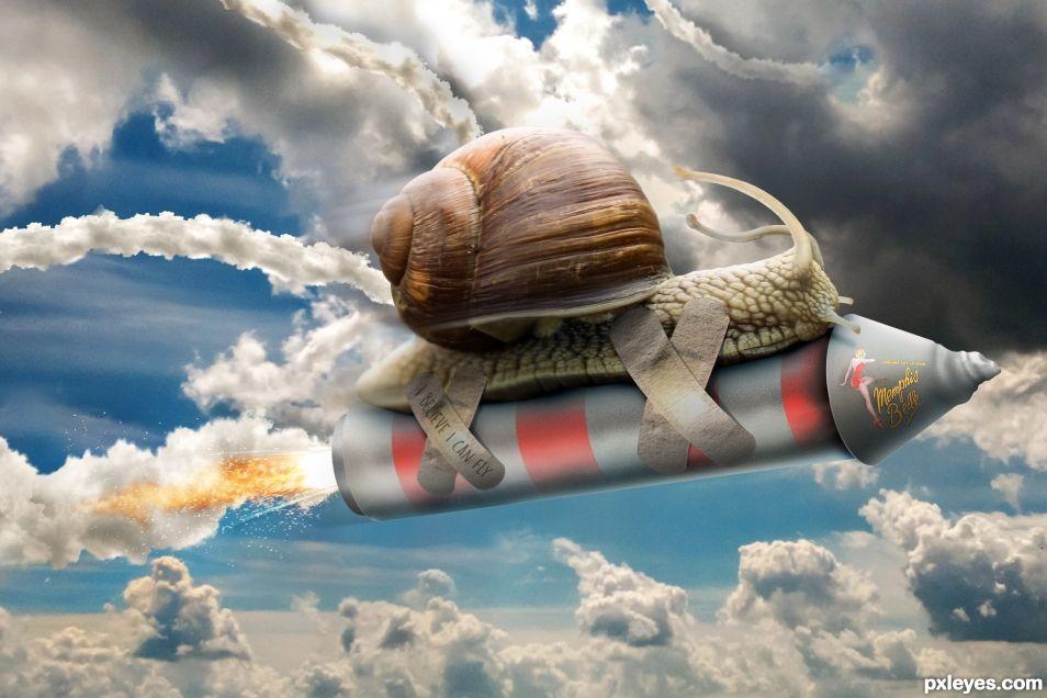 Memphis Belle Snail
