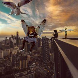 Cityflying