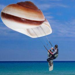 ShellSurfing