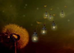 Travelling Lanterns