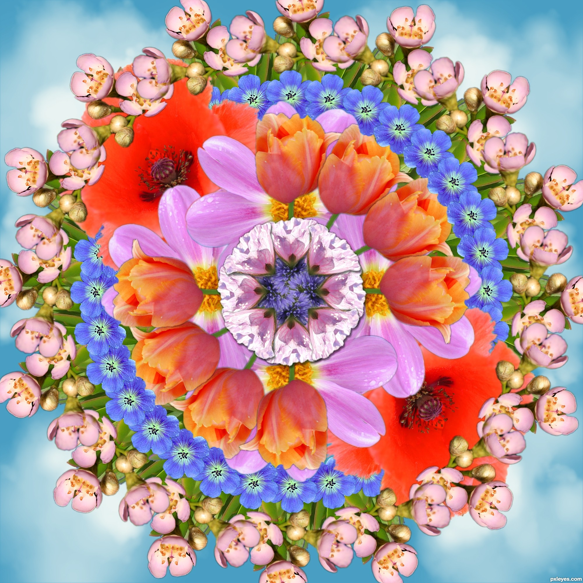 Mandala Bouquet picture, by Nays for: mandala fun photoshop contest ...