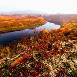 AutumnintheArctic