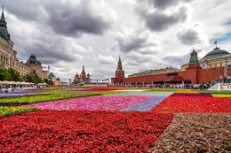 Red Square in Flowers