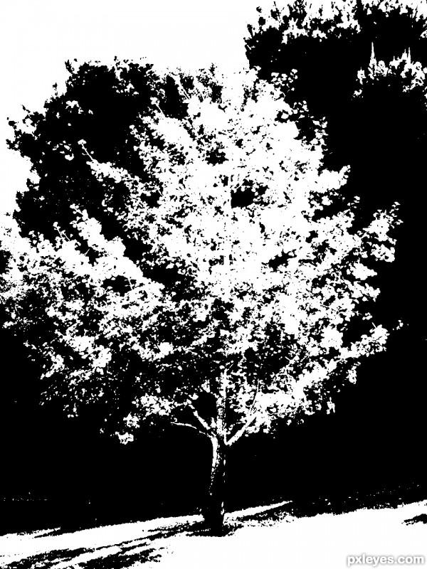 Treed