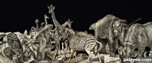 Paper zoo