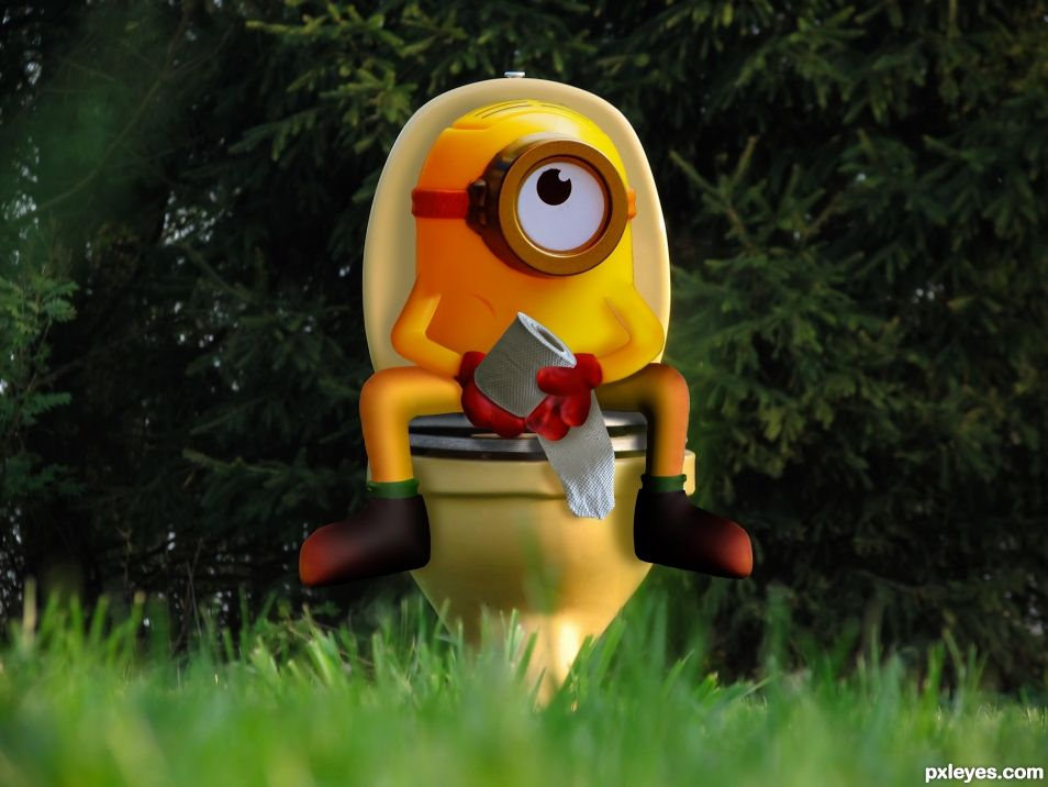 Minion Outhouse