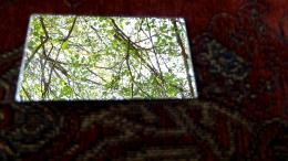 mirroronpillow