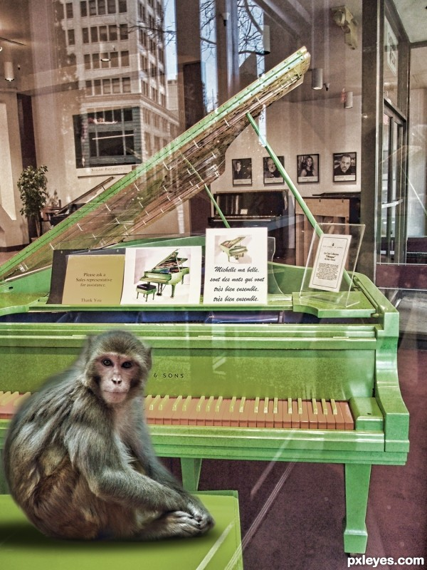some say monkeys play piano