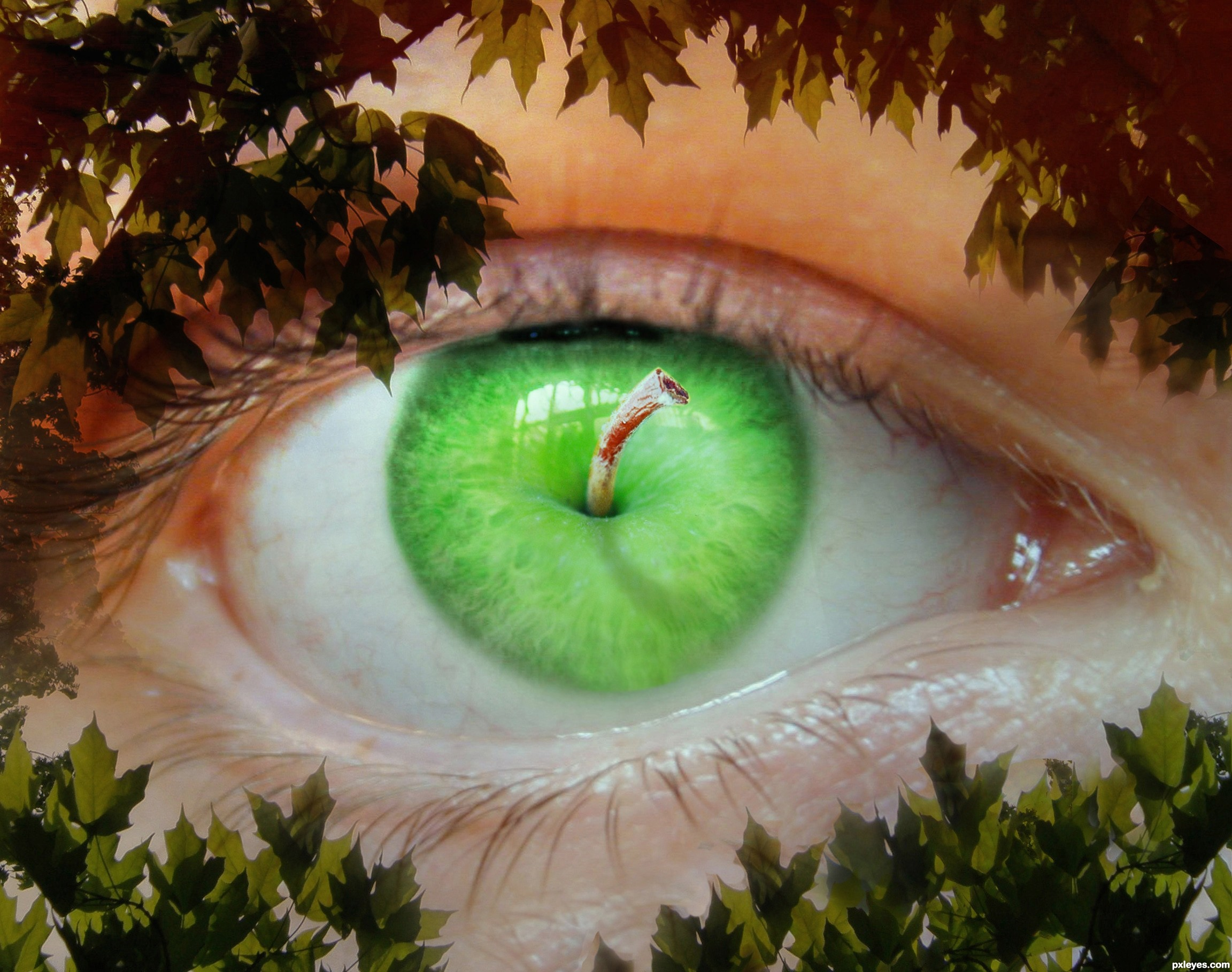 Apple of My Eye picture, by RickLaMesa for: mixed manipulations 14 ...