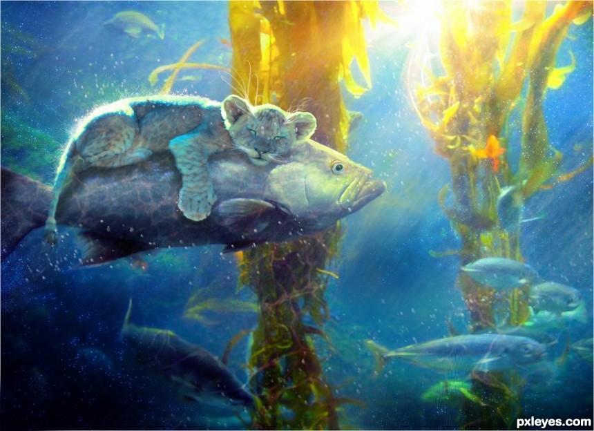 Cat Fish photoshop picture)