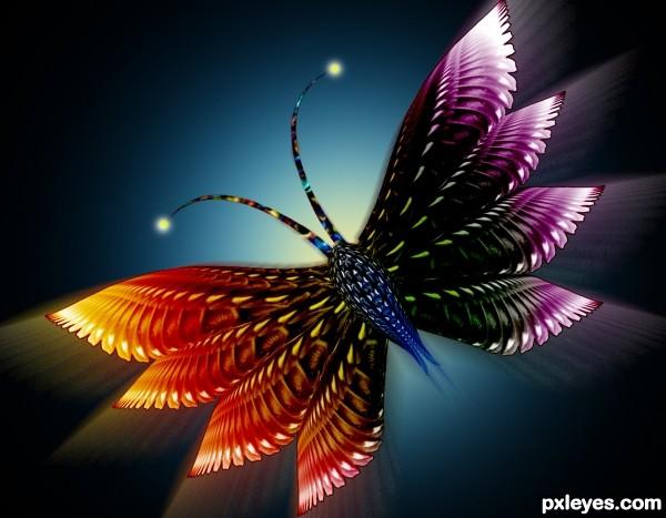 Eye to Butterfly