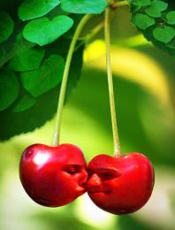 CherryMuch