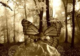 fairytimes