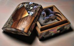 Box of Otter Kisses