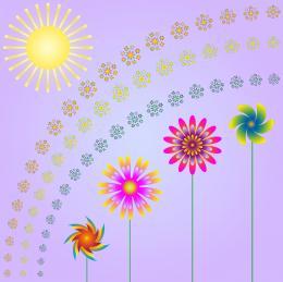 FlowersandSun