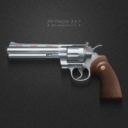 Python 357 Magnum Picture