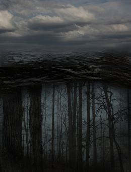 Trees under water