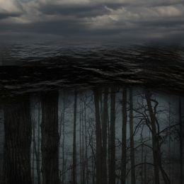 Treesunderwater