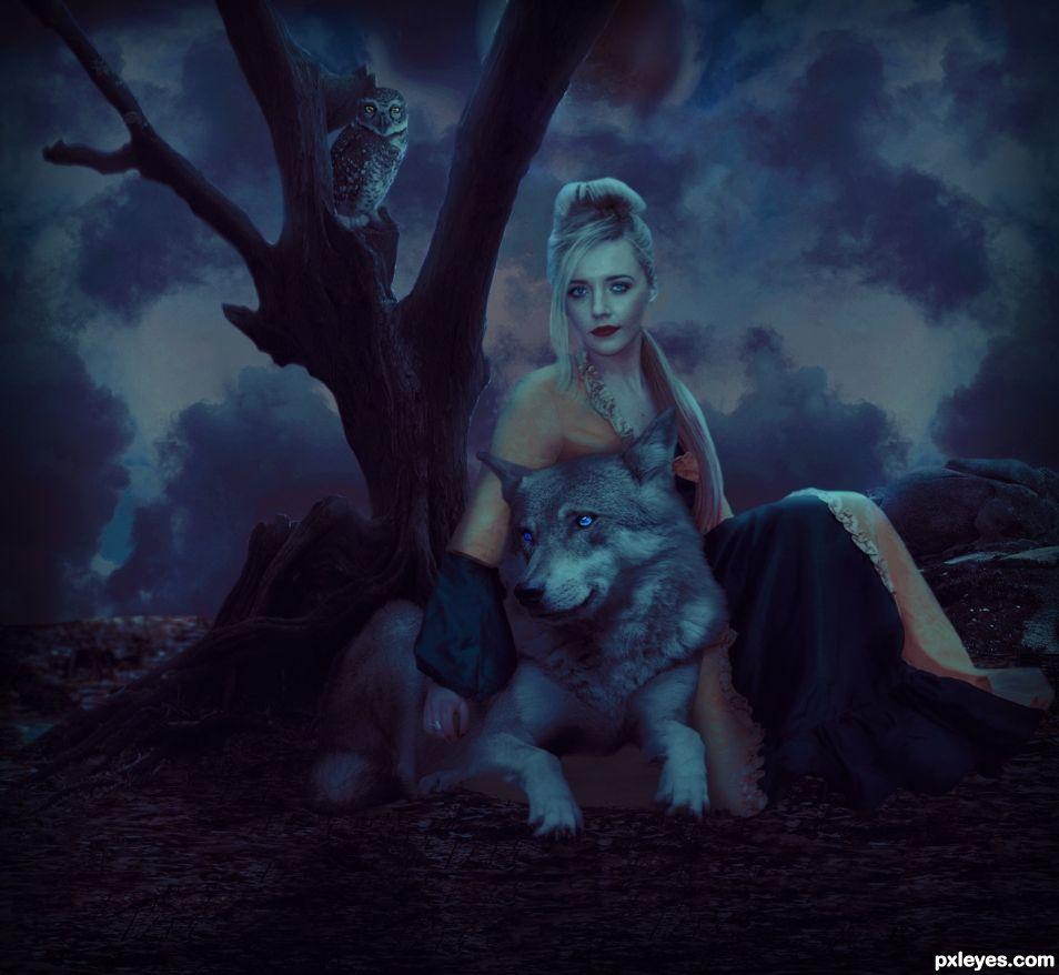 dusk dreams