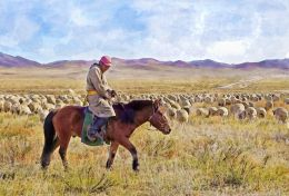 On the Mongolian Plains