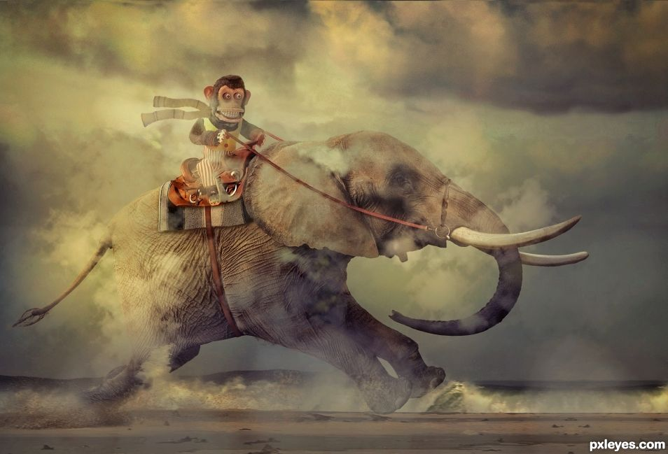 Creation of A Monkey and His Elephant... on a beach... going fast.: Final Result