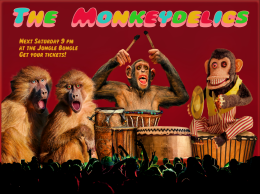 The Monkeydelics