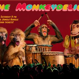 TheMonkeydelics