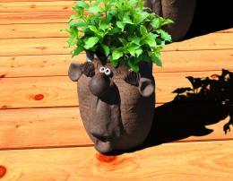 Herb Pot on New Porch