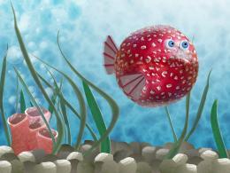 Donoteatthisfish