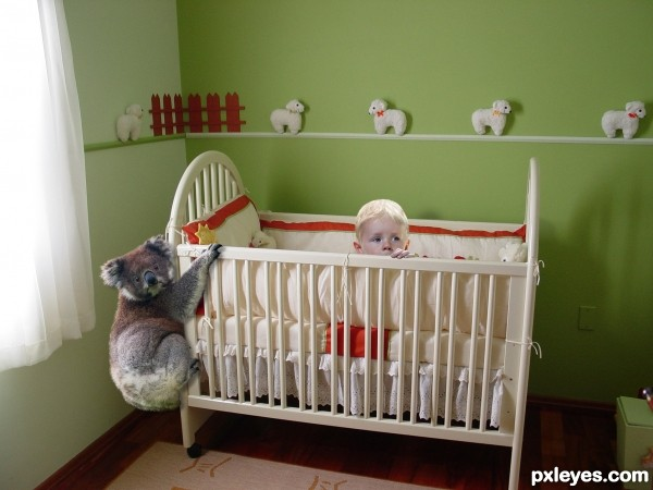 Creation of Koala Nanny: Final Result