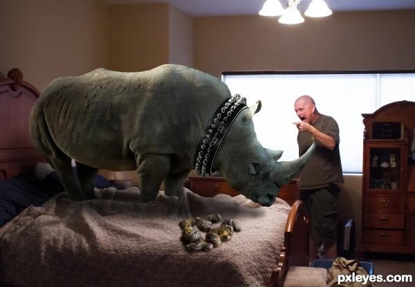 Bad Rhino!