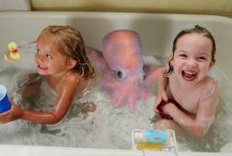 Bathopus