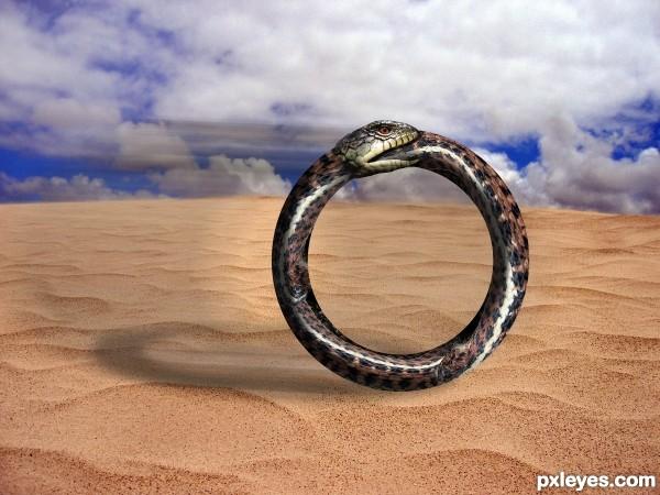 Hoop Snake on the Dunes