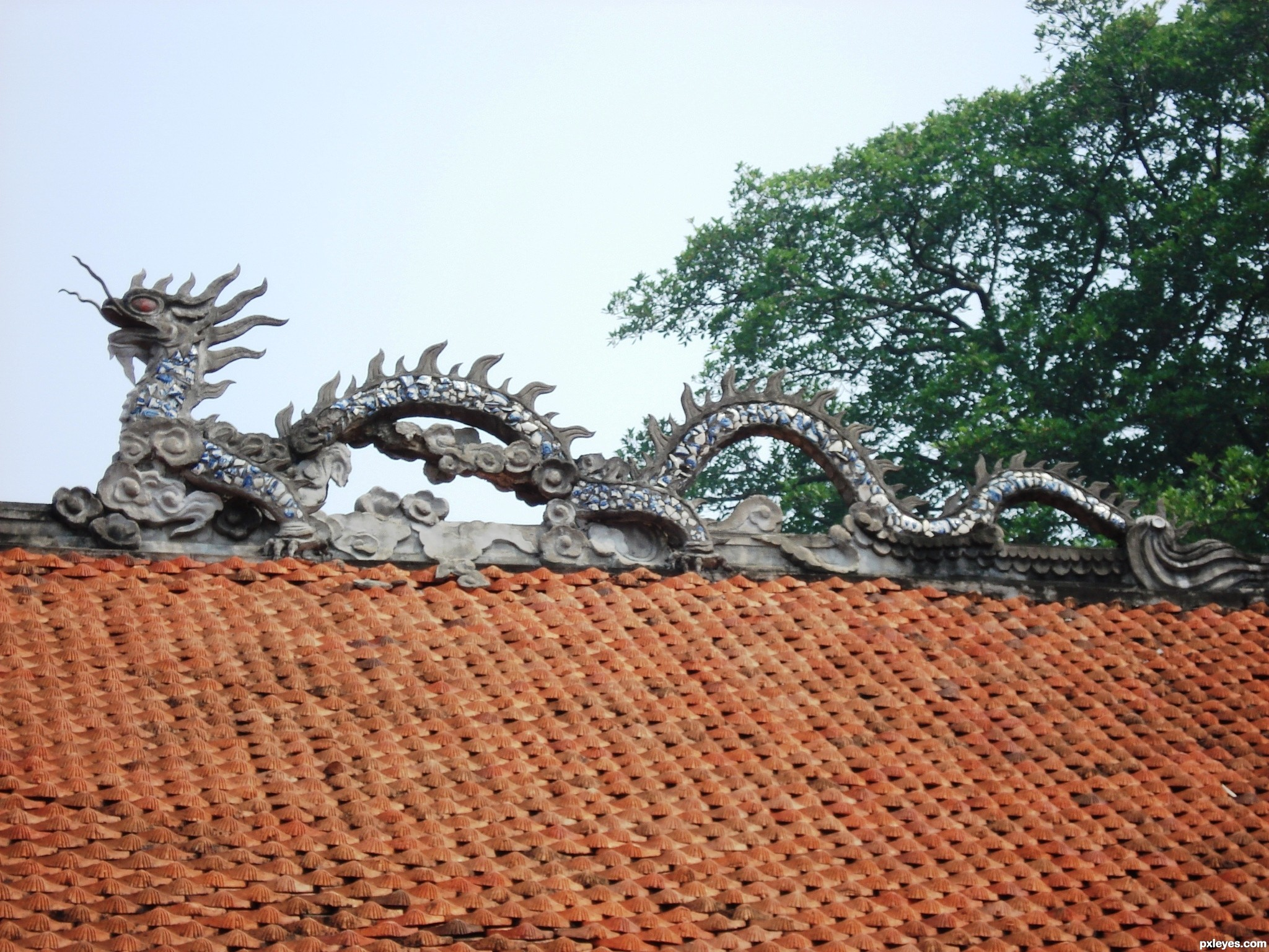 Vietnamese Dragon: Vietnamese Dragon Picture, By McCool For: Mythological