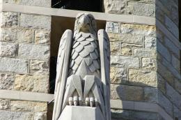 USA, Bald Eagle
