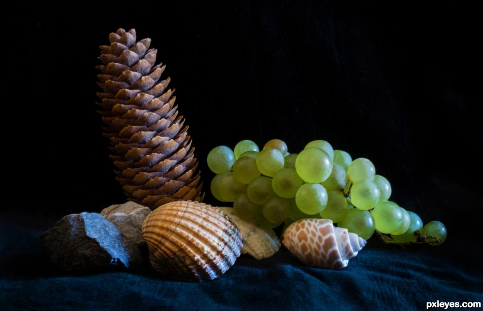 Chasselas on the shore