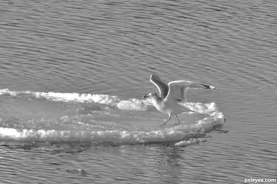 Cold landing