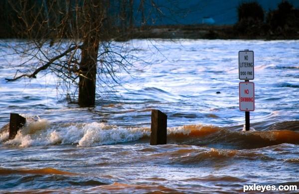 Park n Flood
