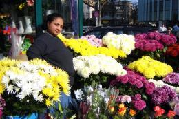 Flowersforeveryone