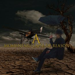 A Momentary Lapse Of Reason (Pink Floyd) Picture