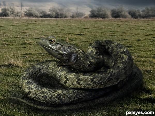 Snakefrog